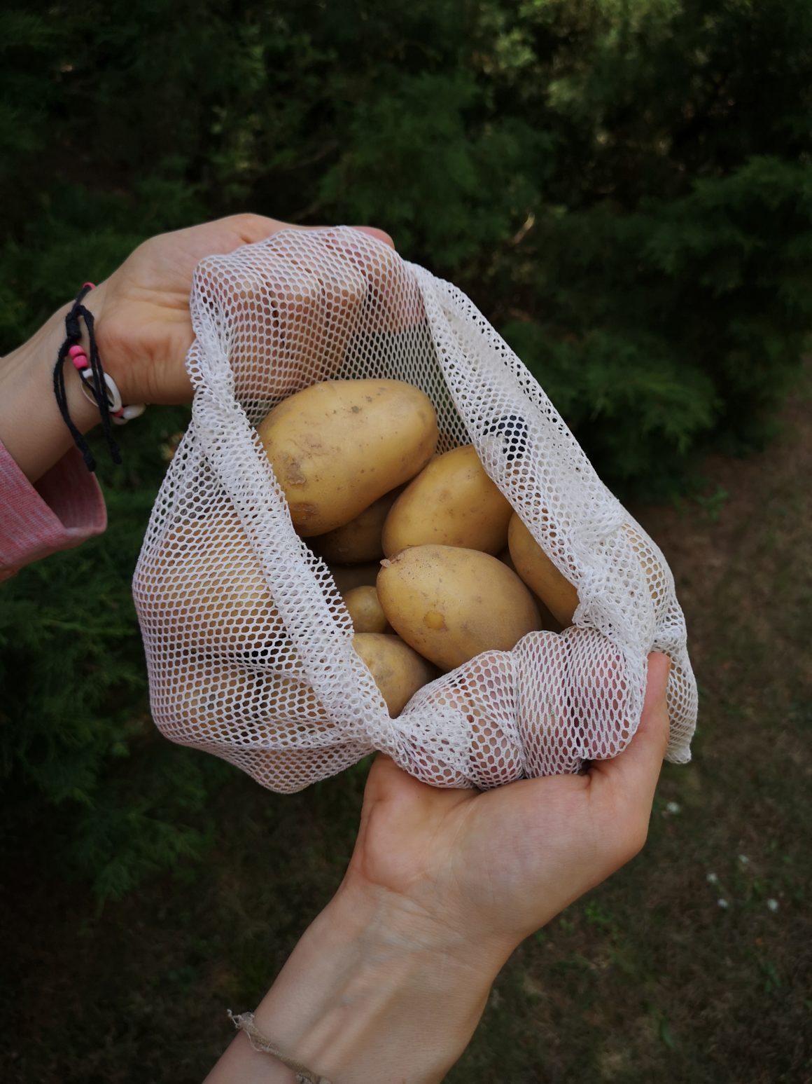 Ziemniaki zawsze do własnego worka
