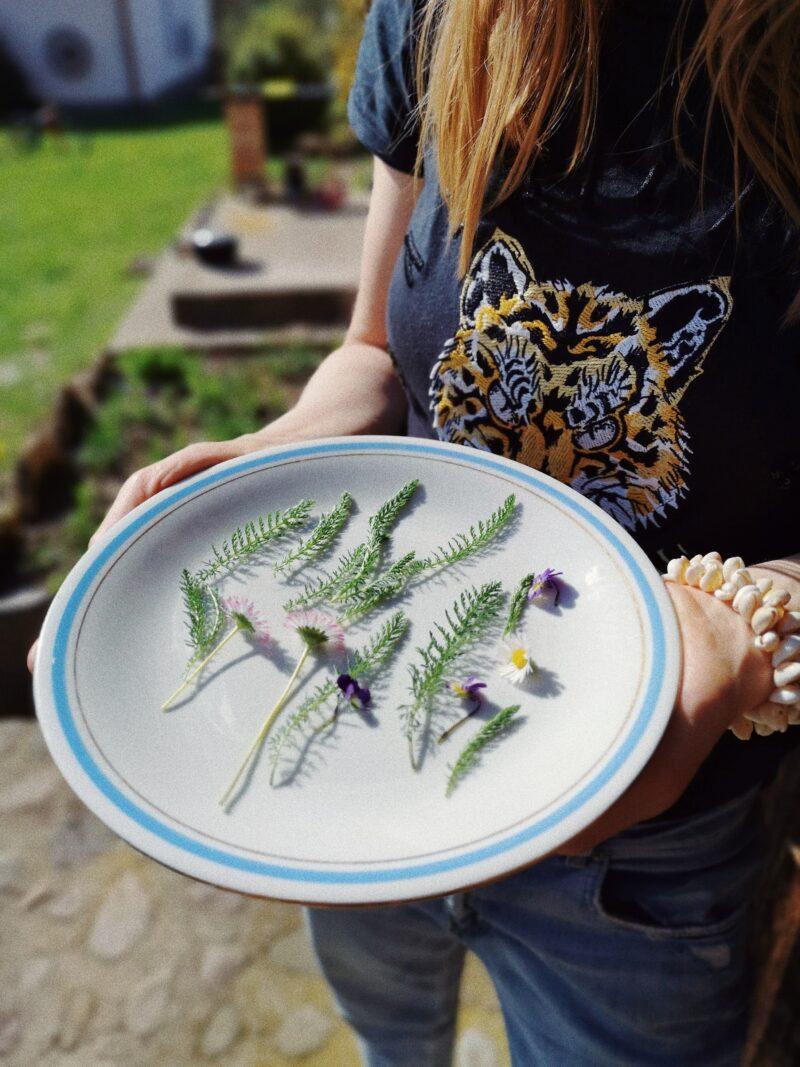 Polne rośliny na talerzu