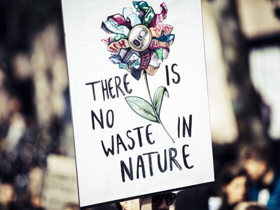 5 zasad skutecznego ekoaktywizmu bez robienia sobie wrogów i przypału